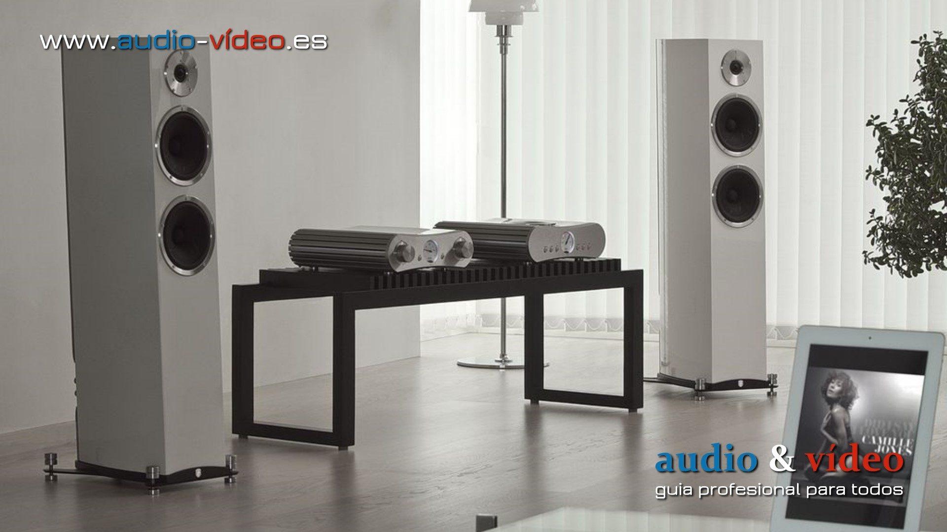 Amplificdor y reproductor CD – Gato Audio