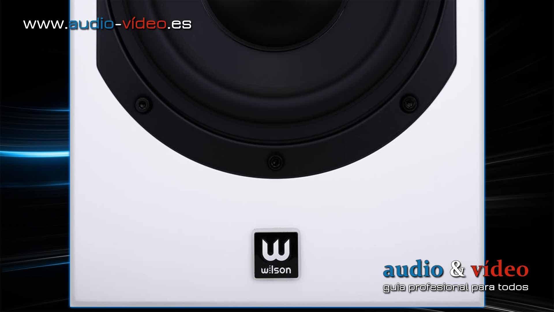 Wilson Six Power – altavoces de suelo con subwoofer activo